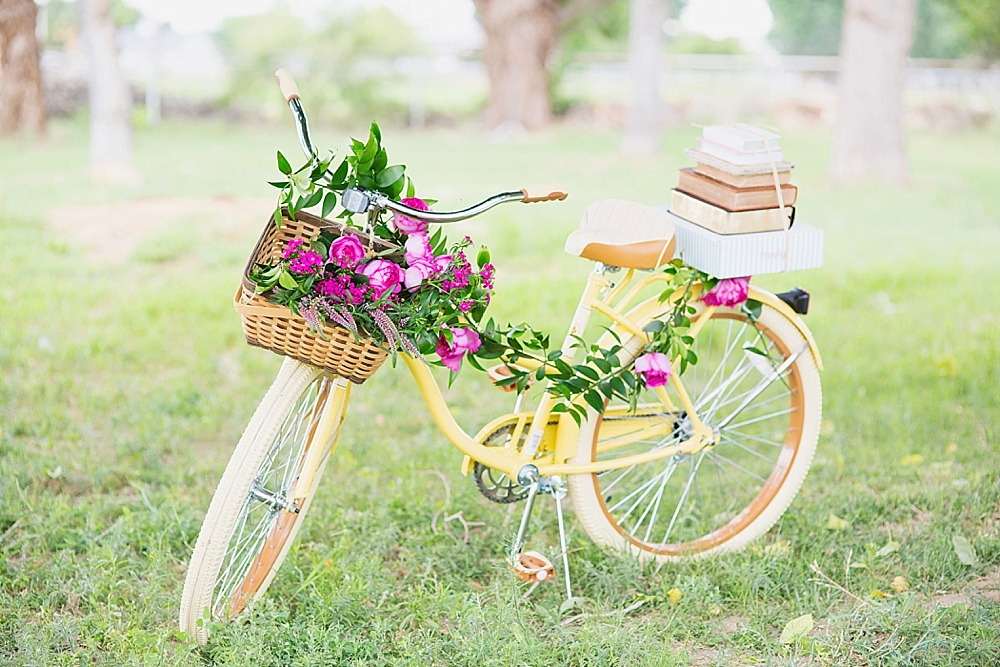 freely-box-yellow-bike-premiere-diana-elizabeth-photography-140