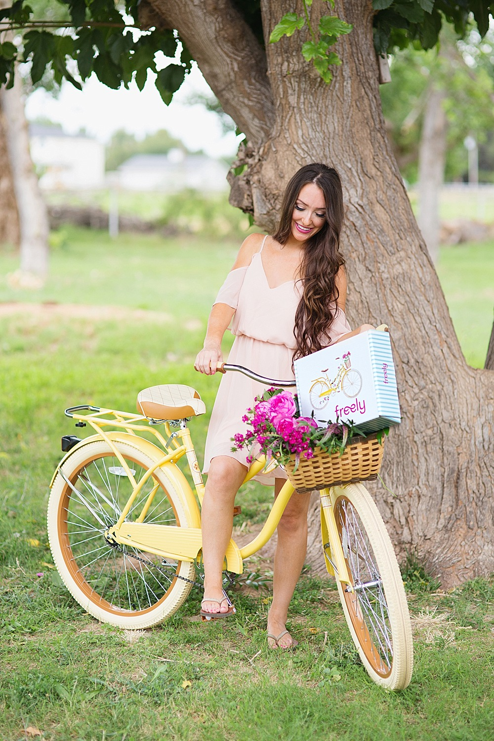 freely-box-yellow-bike-premiere-diana-elizabeth-photography-184