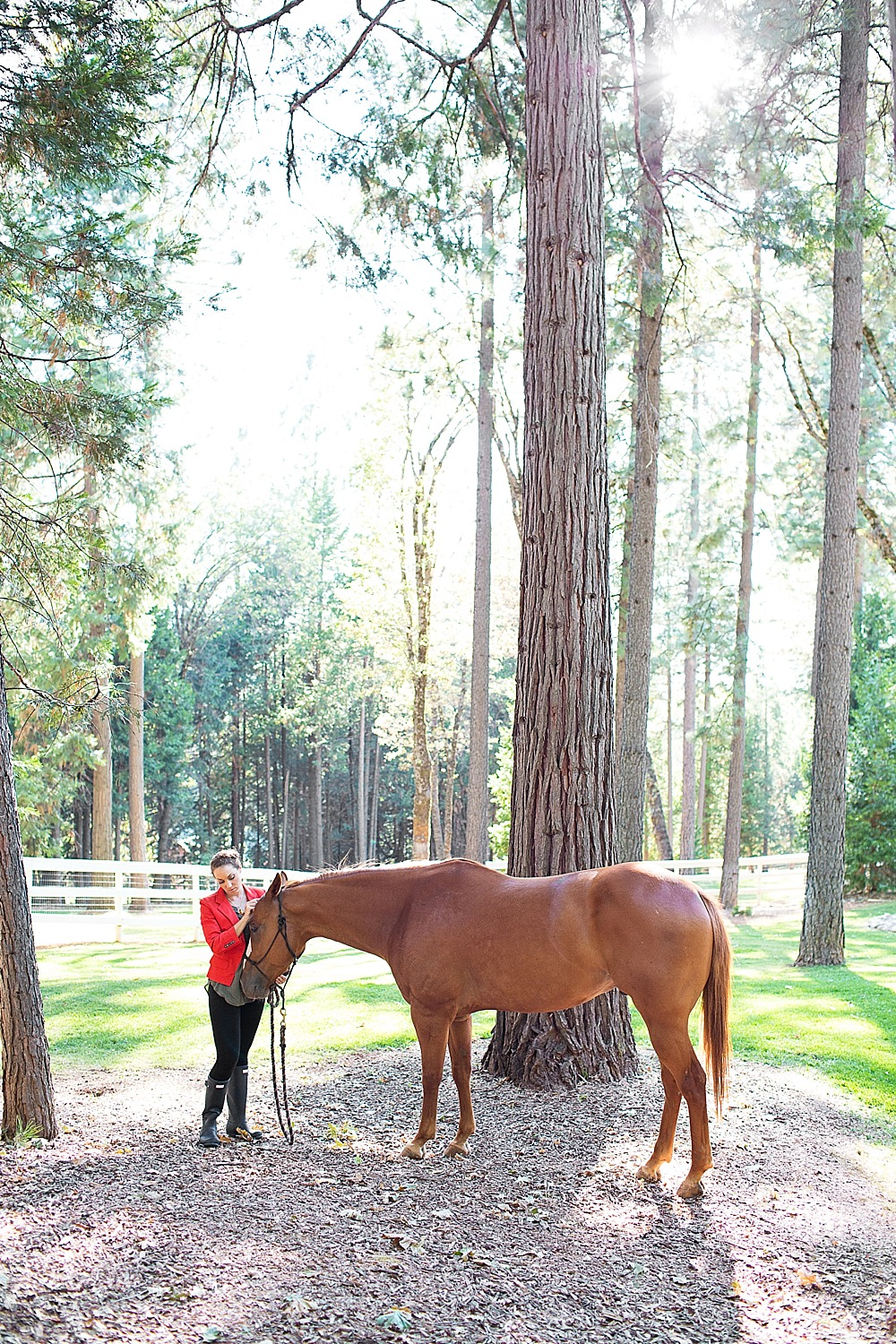 rachel-equestrian-grass-valley-diana-elizabeth-photography-144