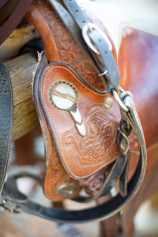 rachel-equestrian-grass-valley-diana-elizabeth-photography-205