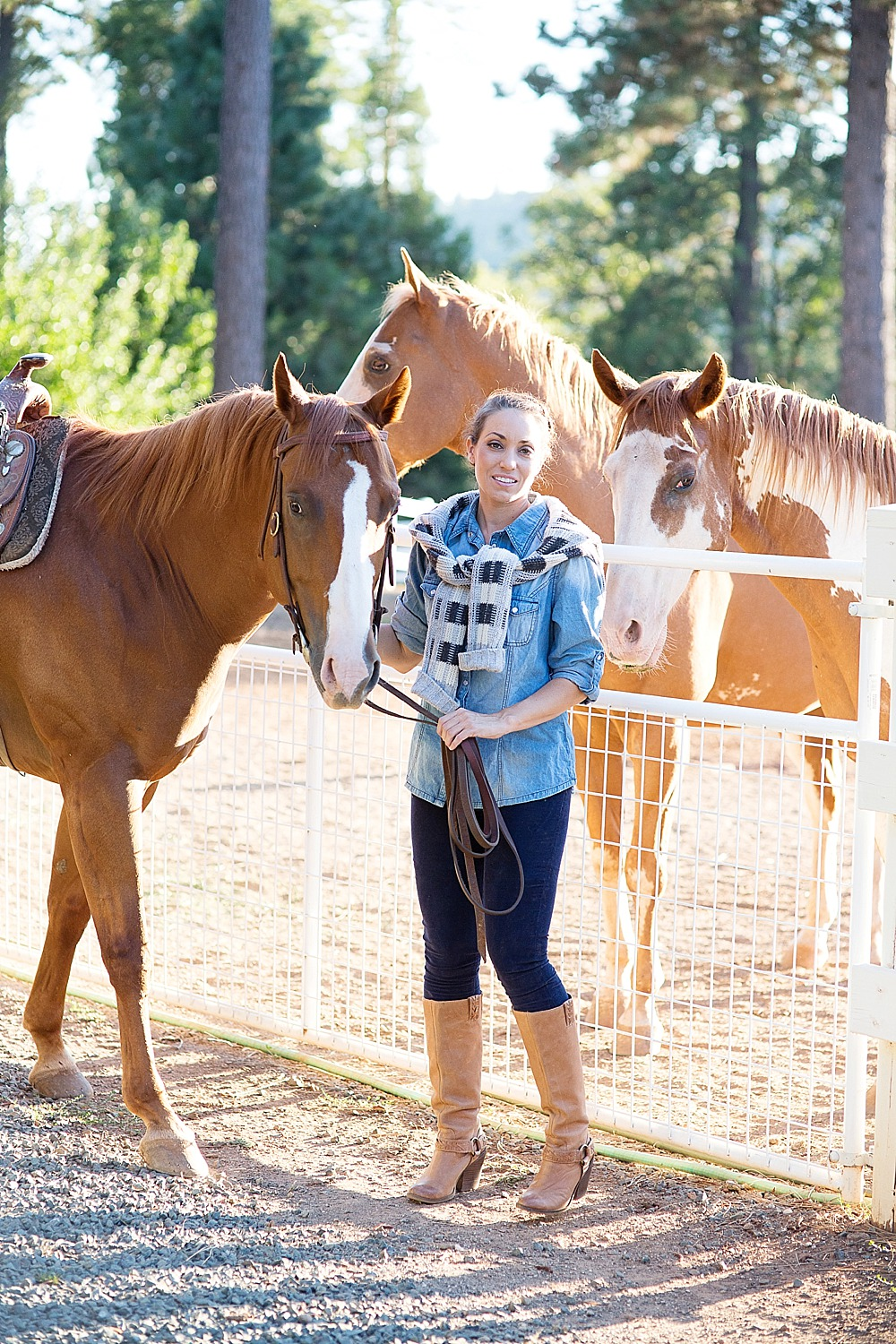 rachel-equestrian-grass-valley-diana-elizabeth-photography-213